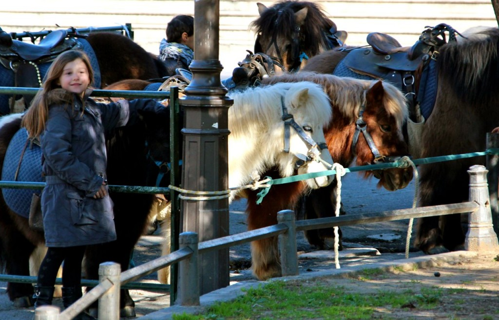 Ange and ponies