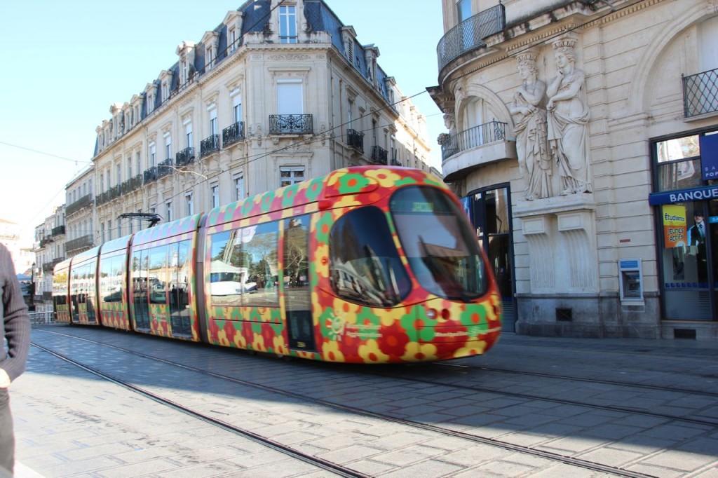 Montpellier Flower Tram