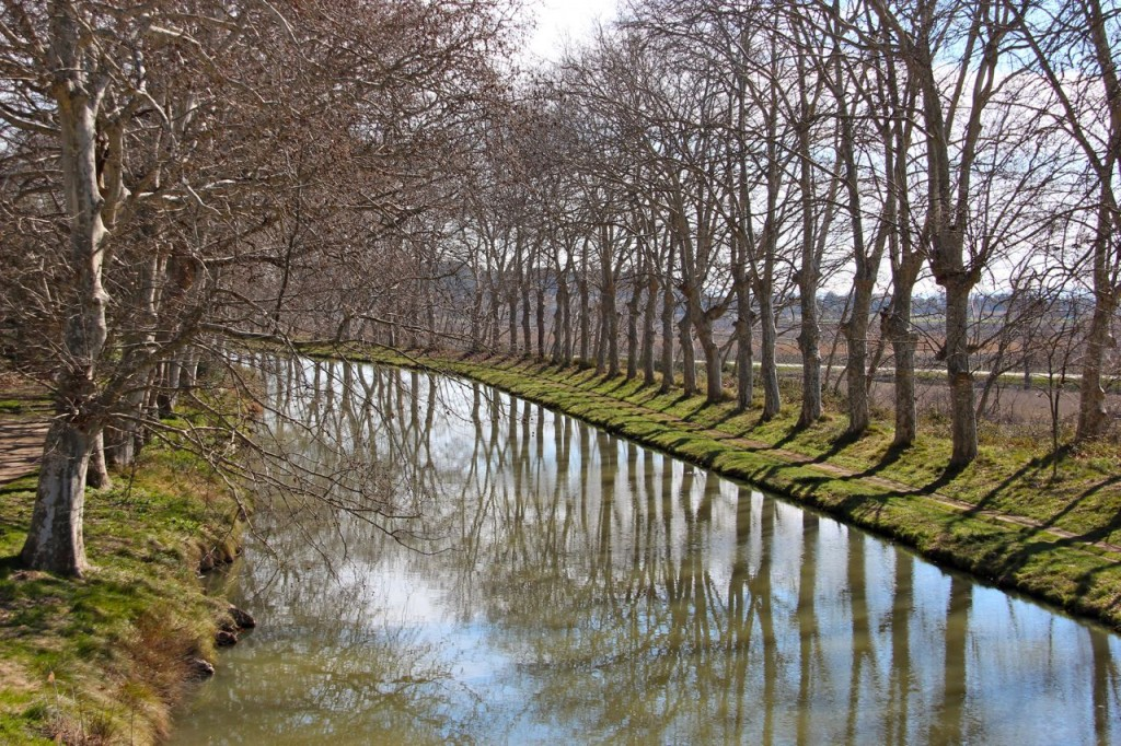 Canal du Midi outside Capestang towards Argiliers