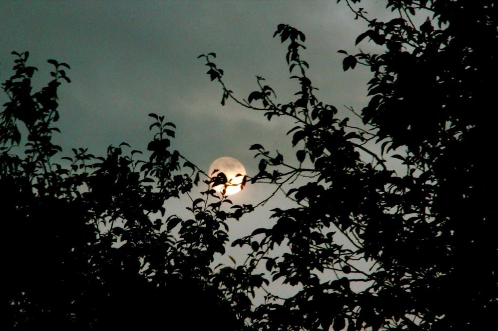 Full moon Friday Summer solstice