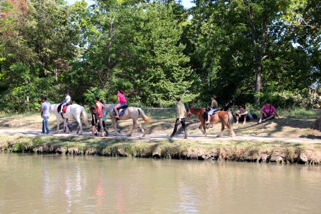 Capestang pony rides