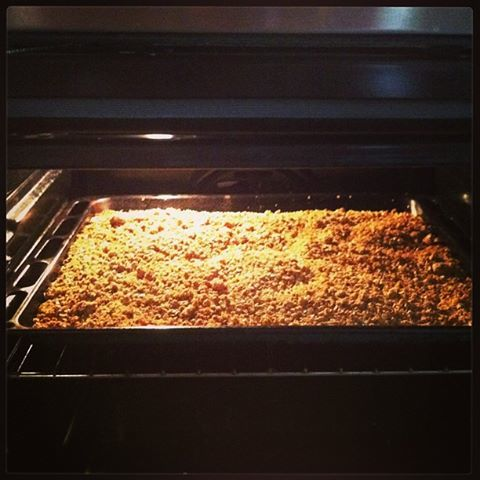 rolled oats in oven