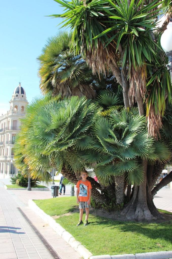 Daniel takes a photo on the rambla in Tarragona