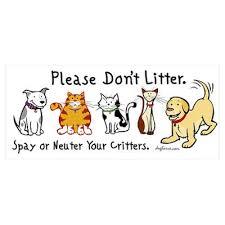 spay&neuter your pet