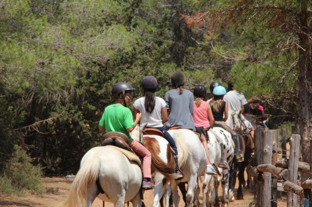 summer Horseback riding