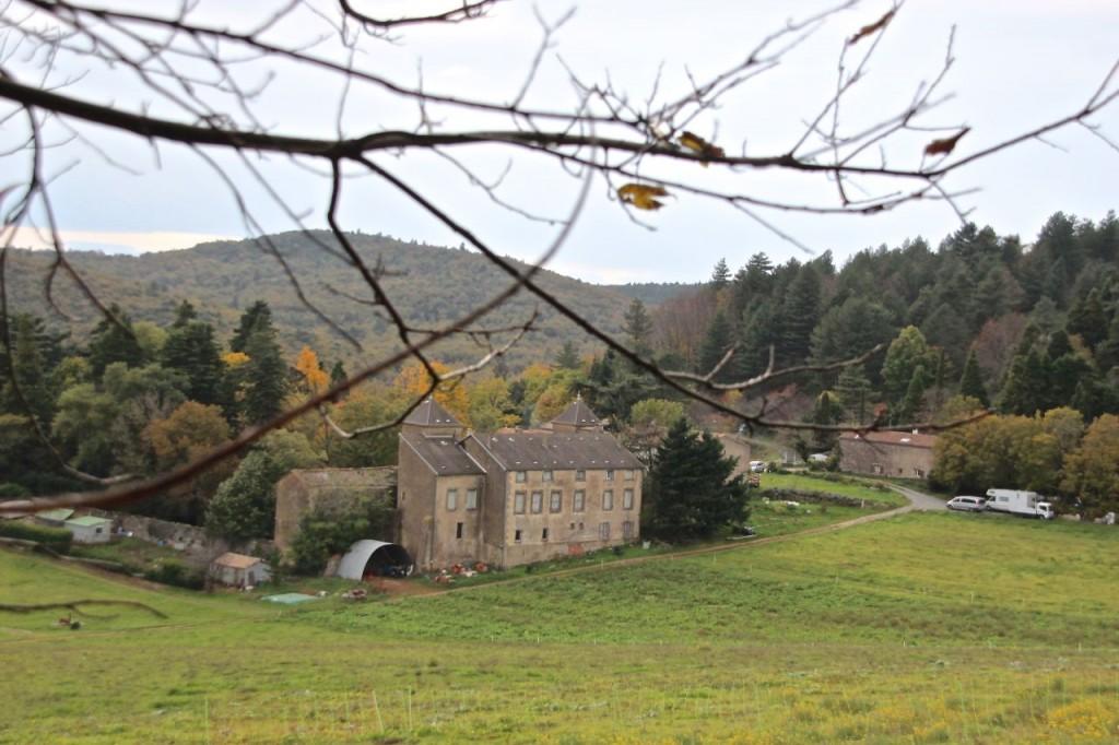 Navet Farm 11