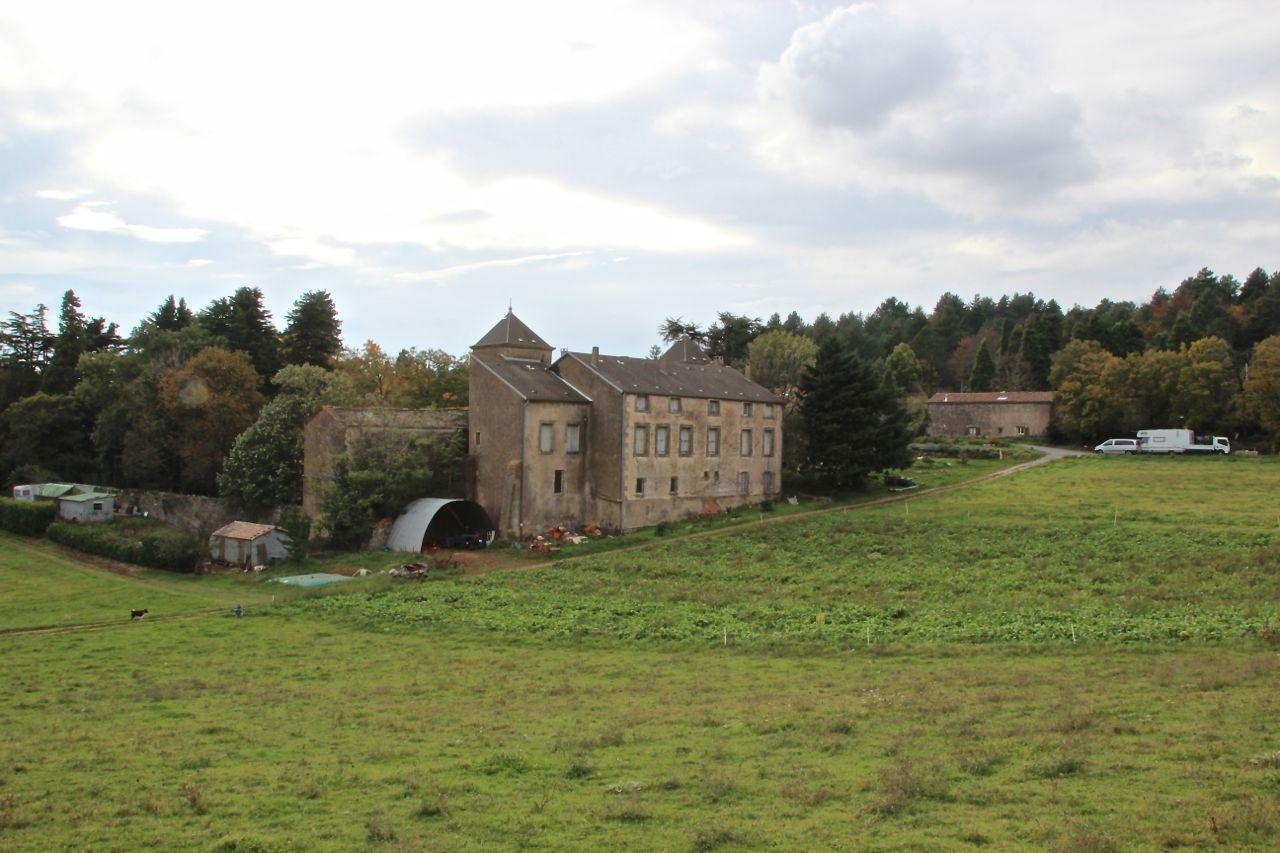 Navet Farm