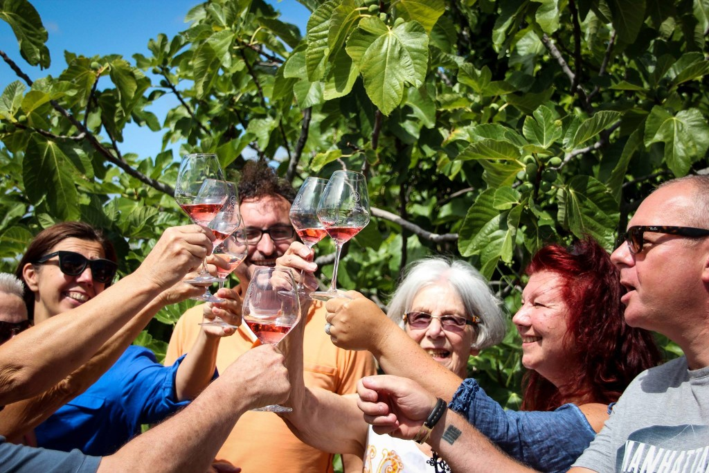 Southern France wine tours