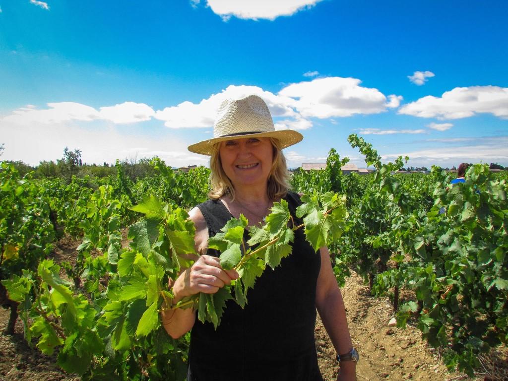 vin en vacance wine tours